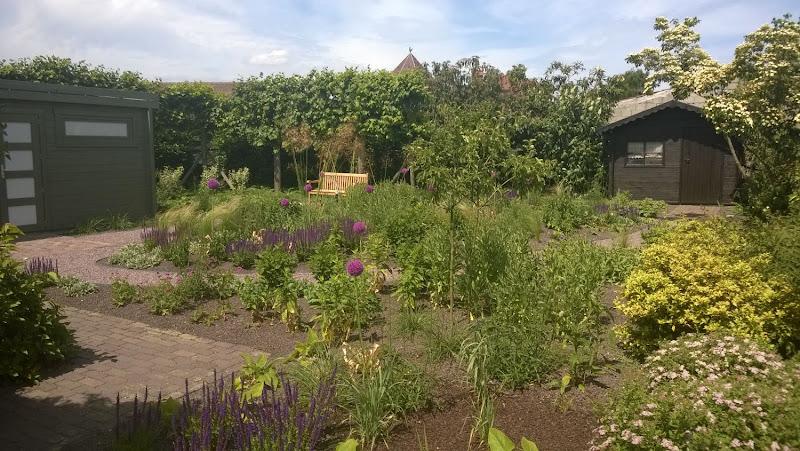 renovatie siertuin /aanleg prairiebeplanting, enkele foto's voor en na ( het is wel degelijk dezelfde tuin ! fotos getrokken 6 maanden na aanleg !