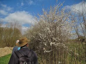 Photo: 16 maart. De lente is in 't land!