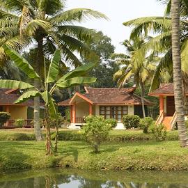 Club Mahindra Kumarakom Resort in Kerala by Rushabh Mane - Public Holidays New Year's Eve ( club mahindra reviews, club mahindra kumarakom resort, club mahindra holidays, club mahindra resort reviews, club mahindra resorts, club mahindra resort in kumarakom, resort in kumarakom, club mahindra kumarakom resort in kerala, kumarakom resort in kerala, resort in kerala, club mahindra review, club mahindra feedback, kumarakom resort )