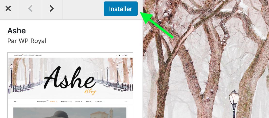 Wordpress-ashe-installer