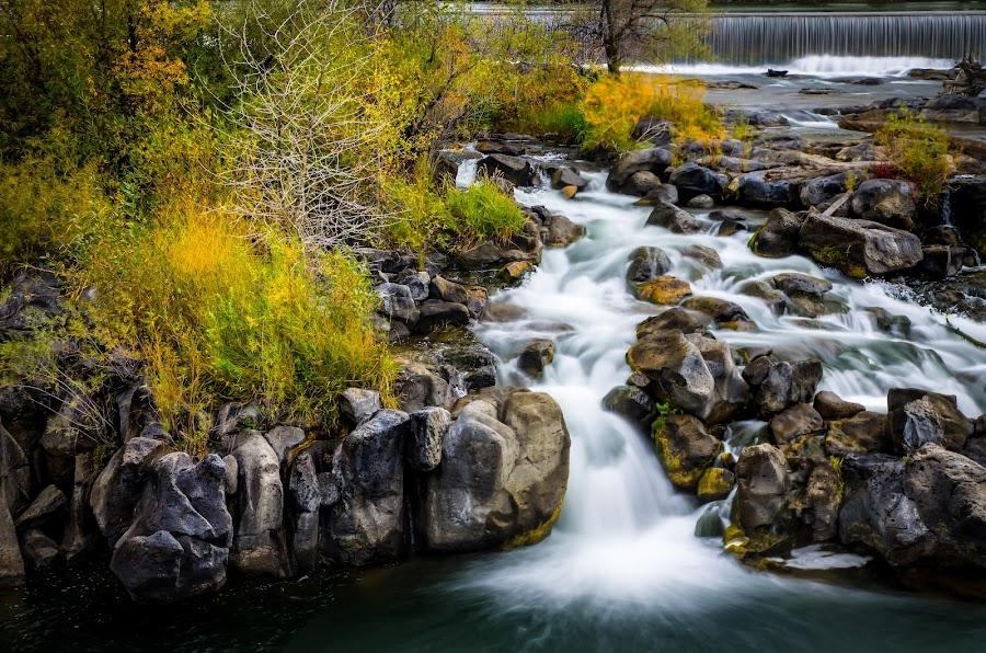 Snake river Idaho Falls by Brent Lindsay - Landscapes Waterscapes ( waterfalls, rocks, river )
