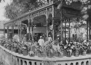 Photo: Hotel De Angelis - Garden restaurant