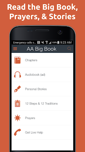 AA Big Book Free - screenshot