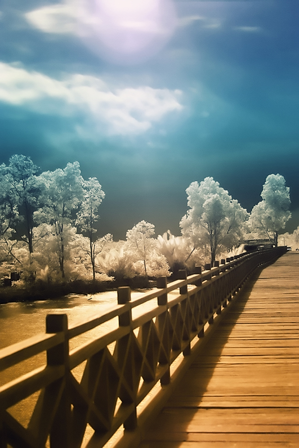 by Rozy Fhotography - Landscapes Waterscapes