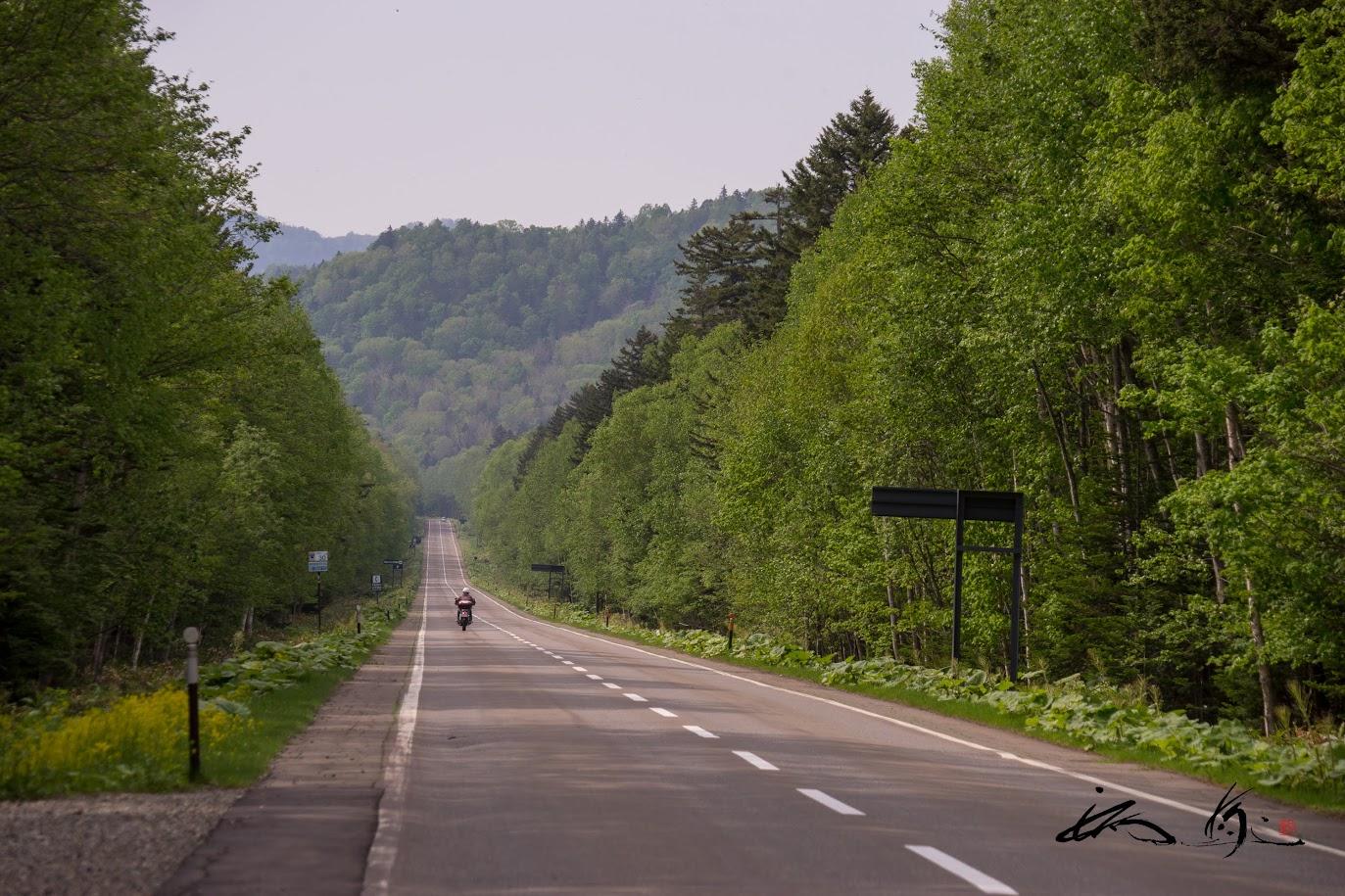 国道を爽快に走り抜けるバイク