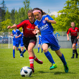 Soccer Hustle by Garry Dosa - Sports & Fitness Soccer/Association football ( running, soccer, ball, sports, outdoors, teams, action, competitive, girls, sport )