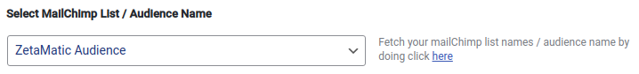 Select MailChimp List / Audience Name