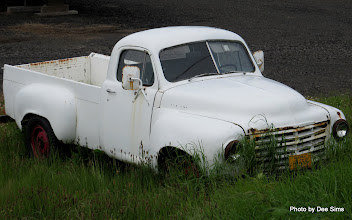 Photo: (Year 2) Day 345 - Old Car on Puget Island