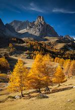 Photo: L'or des Alpes
