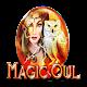 Magic Owl (game)