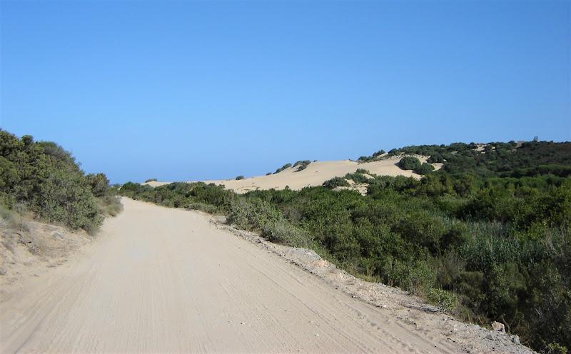Oltre le dune di pandi
