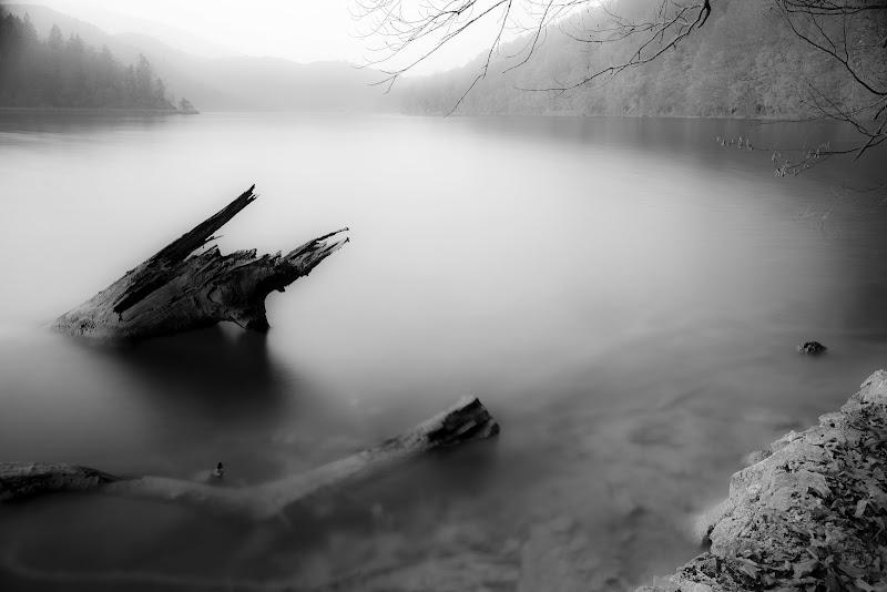 Tranquillità di Claudio Tenca