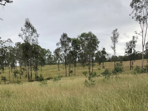 100-800  acres Lease to Buy Mixed Farming Yarraman, Queensland