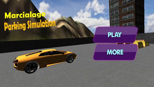 Real Car Parking Simulation
