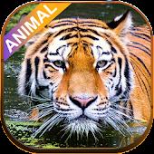 Tải Animal sounds APK