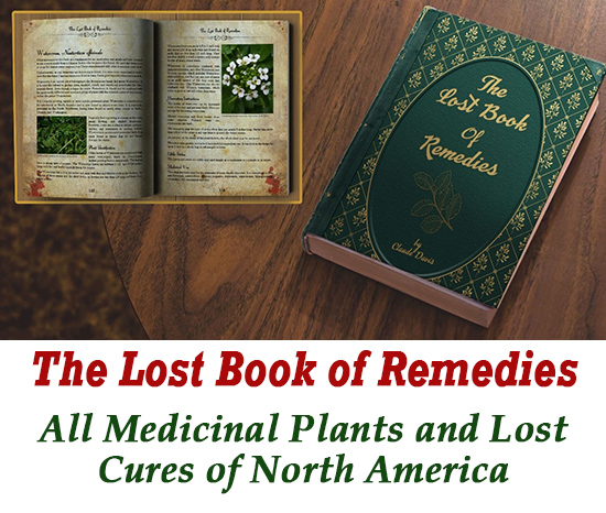 Lost Remedies Herb Book - How to make herbal medicine