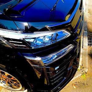 ヴェルファイア AYH30W ZR Gエディションのカスタム事例画像 リンク♂さんの2019年03月20日15:59の投稿