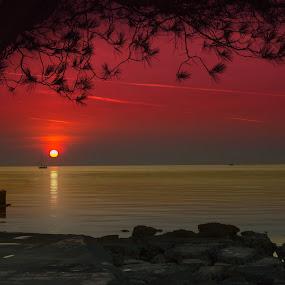 by Maya Cvetojevic - Landscapes Sunsets & Sunrises (  )