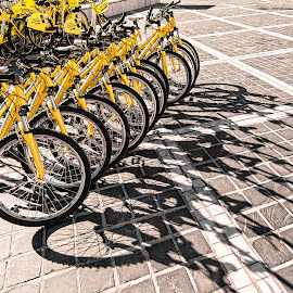 Rental Bikes with Shadows by Richard Michael Lingo - Transportation Bicycles ( artistic objects, bikes, yellow, shadows, bicycles )