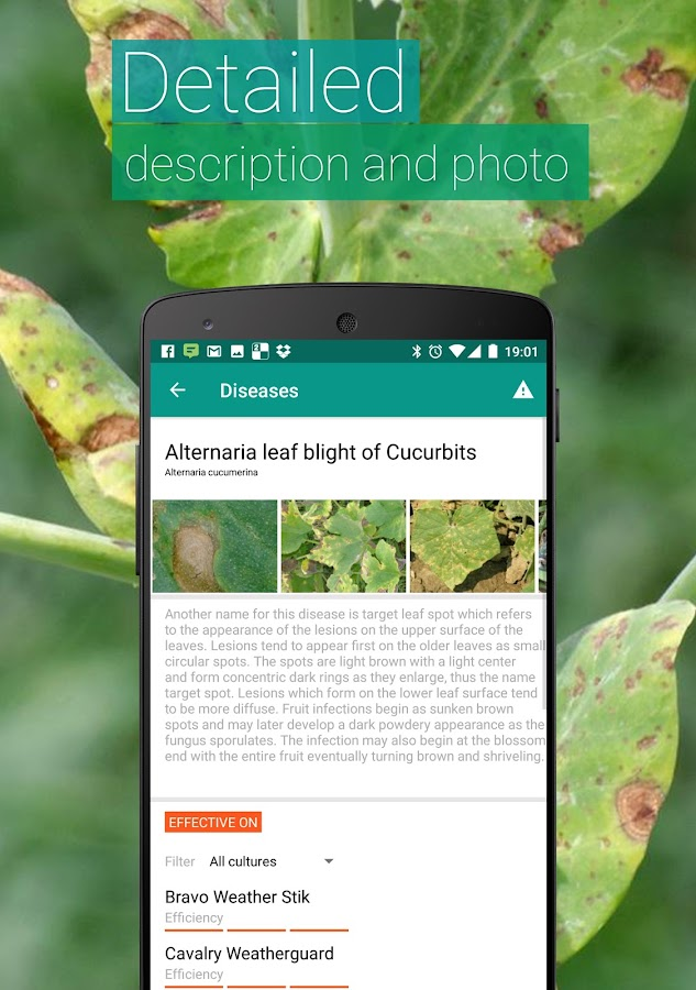 Agrobase - weed,disease,insect- screenshot