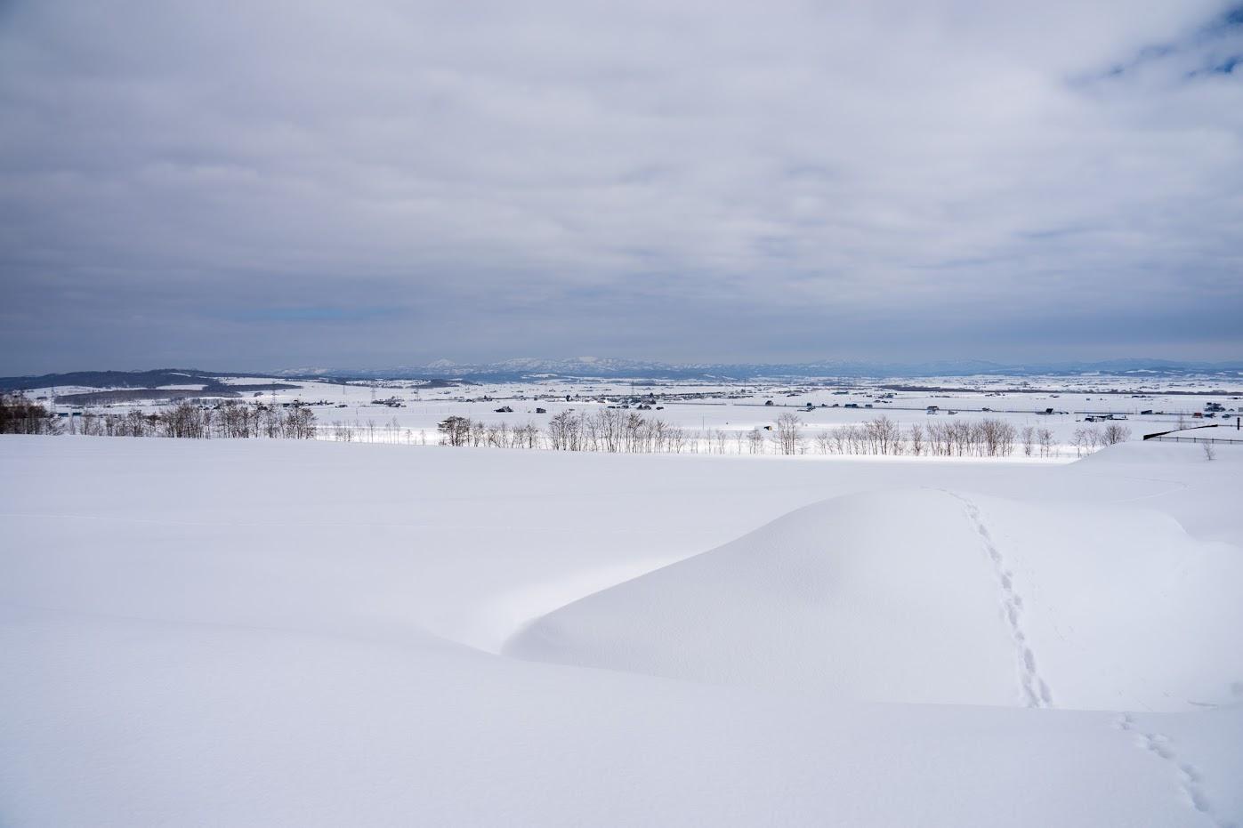 北竜町眺望の丘近辺