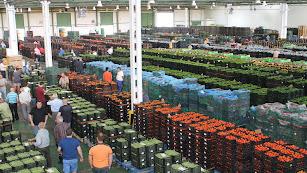 Instalaciones comerciales de Agroponiente en El Ejido.