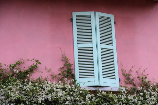 Primavera alla casa rosa di laura62