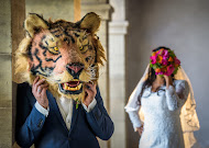 Hochzeitsfotograf Reza Shadab (shadab). Foto vom 18.11.2018