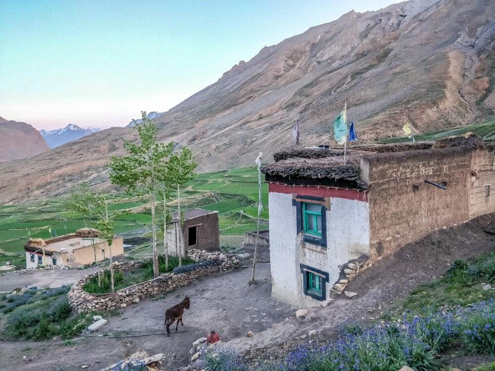 chicham+village+Spiti+valley+himachal+india