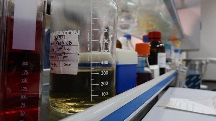 古巴的生物科技中心「分子免疫學中心」(CIM)已開發專門針對肺癌的疫苗—CIMA...