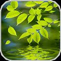 Nature Live Wallpaper icon