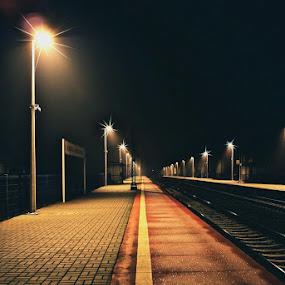Dabrowa by Marta Bednarska - Transportation Trains ( night trains, pwcdetails )