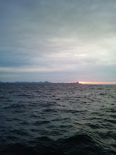 Photo: 日が昇ってきた。今日も一日、楽しくガンバるぞー!