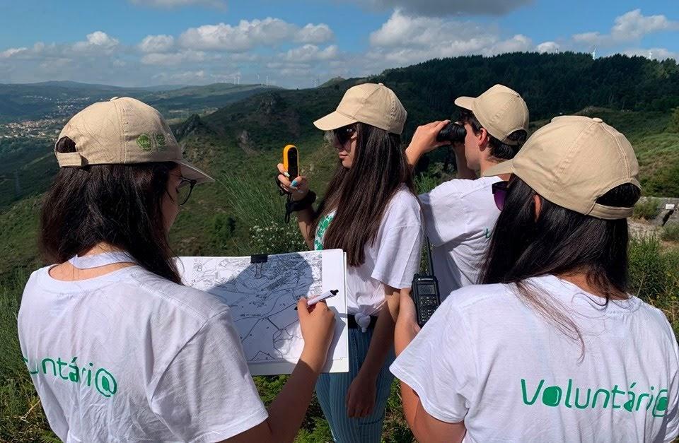Abertas as candidaturas para programa de voluntariado jovem nas florestas