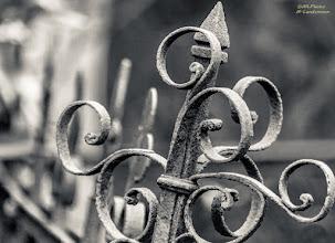 Photo: Melaten fence