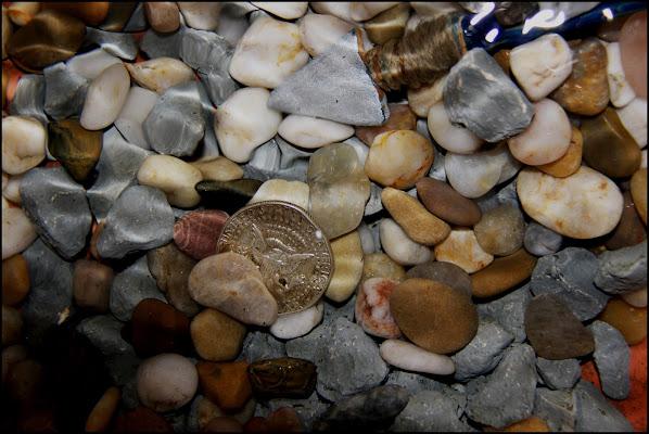 Fiume Sand Creek di gian