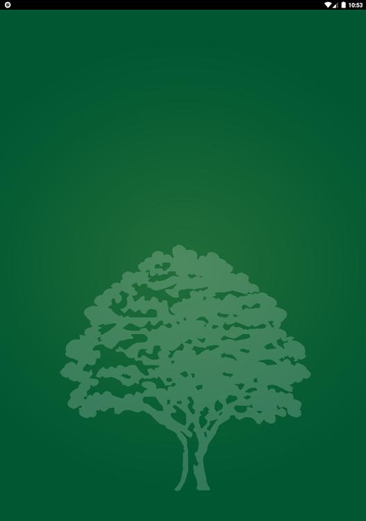 Soshanguve társkereső oldal