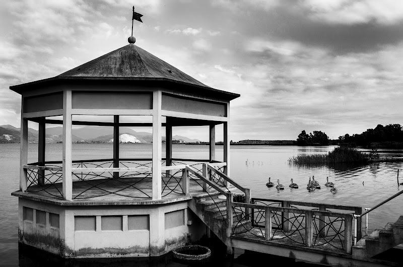 The Lake di Sara Luperini