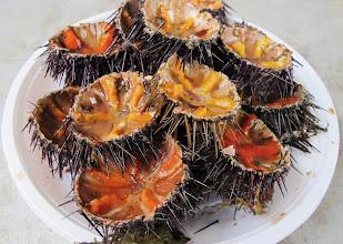Photo: sea urchins (erizos - ricci)