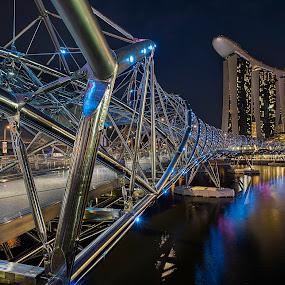 The Helix by Martin Yon - Landscapes Travel ( sands, bay, helix, mbs, marina, bridge, landscape, singapore, nightscape )
