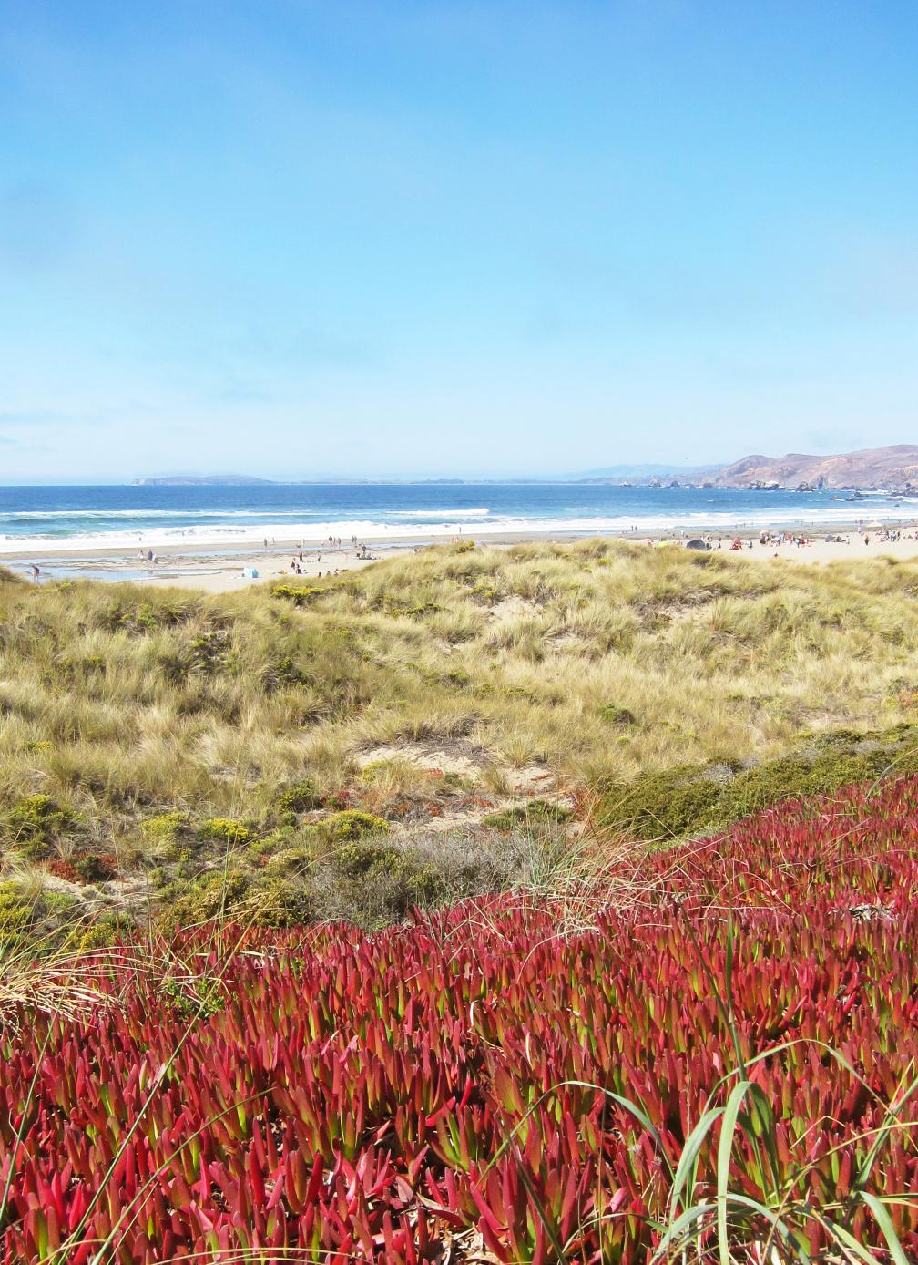 Dillon Beach, Highway 1 north of San Francisco