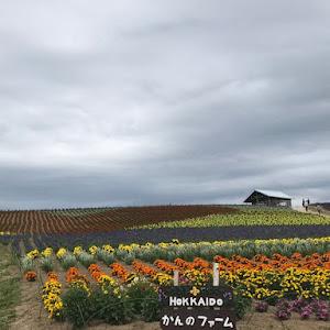 ウィッシュ ZNE14G 平成17年式  XSパッケージのカスタム事例画像 ウイッシュ君(名前変更)さんの2019年07月19日20:57の投稿