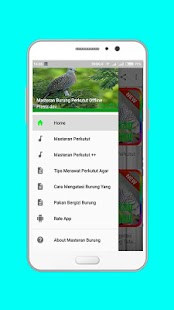 Masteran Burung Perkutut Offline - náhled