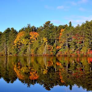 Little Lake 2.jpg