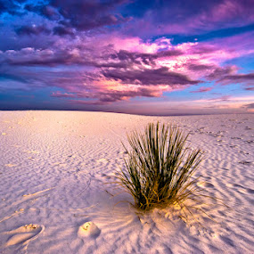 by Colin Gallagher - Landscapes Deserts