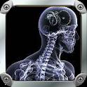 Anatomize icon