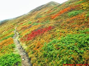 Photo: IMG_4084 i colori dell autunno sull appennino reggiano sullo 00 EXTRAVIVACE
