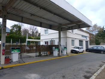 locaux professionels à Etiolles (91)