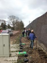 Photo: 22 maart Klimop planten bij het fietspad over de tunnel