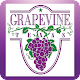 My Grapevine Download on Windows